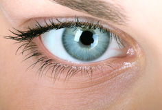 Woman Close-up. Eye of beautiful women close-up Royalty Free Stock Photography