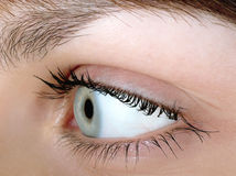 Woman Close-up. Eye of beautiful women close-up Royalty Free Stock Images