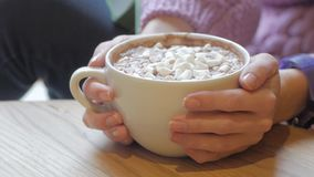 Close up of cocoa cup. Woman with cocoa cup with marshmallows stock video footage