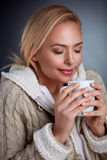 Woman in cold days Stock Images