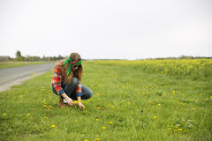 Woman collect flowers near road on field Royalty Free Stock Photos