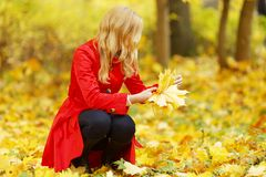 Woman collect leaves Royalty Free Stock Image