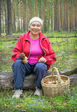 Woman collect mushrooms in a pine forest Stock Photos
