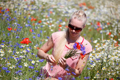 Woman collecting flowers Stock Image