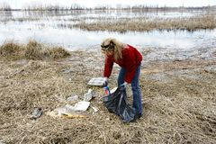 Woman collecting rubbish in nature Stock Photography