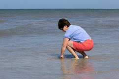Woman collecting shells in the surf in the Gulf of Mexico Stock Photo