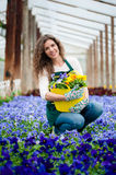 Woman in a colorful flower garden in a greenhouse. Royalty Free Stock Image