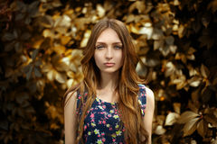 Woman with colorful leaves in beautiful yellow Stock Photography
