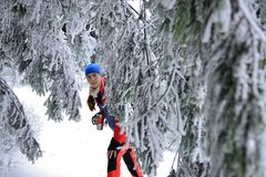 Woman in the colour climbing dress amongst trees coated with the snow. Royalty Free Stock Photo
