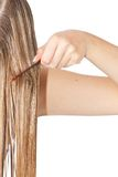 Woman combing hair Stock Images