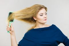 Woman brushing her long hair with brush. Woman combing her hair with brush. Young female with beautiful natural blond straight long hairs, studio shot on grey Stock Photo