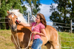Woman combing pony on horse stable Royalty Free Stock Image
