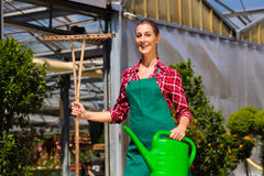 Woman commercial gardener in nursery Stock Image