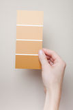 Woman comparing paint swatches to wall color Royalty Free Stock Photos