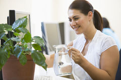 Woman in computer room watering plant smiling. Lookig away from camera Royalty Free Stock Photography