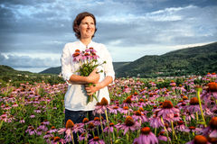 Woman in coneflower field Stock Image
