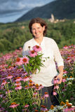 Woman in coneflower field Royalty Free Stock Photos