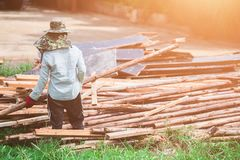 A woman construction laborer carrying wood beam. A woman construction laborer carrying wood beam on green grass stock photo