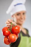 Woman cook with tomatoes Royalty Free Stock Photo