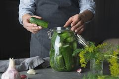 Woman cooking cucumbers with garlic and dill. Rustic dark style. Close up. Woman cooking marinated cucumbers with garlic and dill in glass jar. Rustic dark style royalty free stock photos
