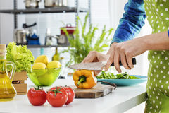 Woman cooking in the kitchen. Woman cooking in the  kitchen Royalty Free Stock Photos