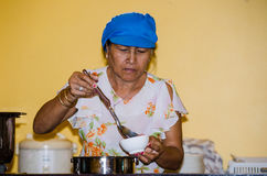 Woman cooking. Royalty Free Stock Image