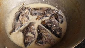 Woman cooks tuna fish in coconut milk in a dirty kitchen in an old fashioned way. Close up stock video footage