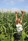 Woman in corn. Stock Photography