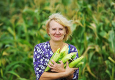 Woman and corn. Royalty Free Stock Image