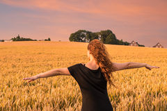 Woman in a cornfield Royalty Free Stock Photo