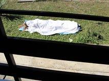 Woman& x27; corpo di s sotto il lenzuolo Immagini Stock Libere da Diritti