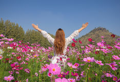 Woman with cosmos flower field Royalty Free Stock Image