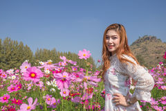 Woman with cosmos flower field Stock Image