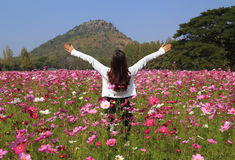 Woman in cosmos flower field Royalty Free Stock Photography
