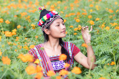 Woman in costume for Karen sniffs a flower. Asian woman in traditional costume for Karen sniffs a flower Cosmos orange on meadow stock photo