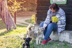 Woman in countryside near house with dogs Stock Images