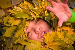 Woman covered by autumnal leaves Royalty Free Stock Photography