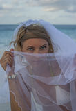 Woman covering her faace with veil Stock Images