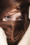 Woman covers the face by long brown hairs Royalty Free Stock Photography