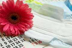 Woman critical days, Menstruation calendar, flower. Sanitary pads, calendar, towel and pink Gerber on light background royalty free stock photo