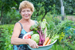 Woman with crop of fresh vegetables Royalty Free Stock Photos