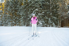 Woman cross country skiing in forest Stock Images