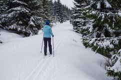 Woman cross-country skiing in the Jizera Mountains Royalty Free Stock Photos
