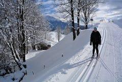 Nordic Skiing in Kaisergebirge, Tirol, Austria Stock Photos