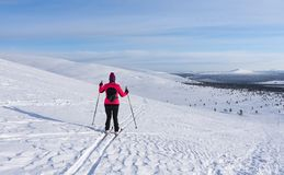 Woman cross country skiing in Lapland Finland Royalty Free Stock Photo