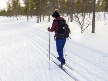 Woman cross country skiing in winter snowy landscape royalty free stock photos