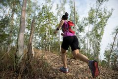 Woman cross country trail running in forest stock photo