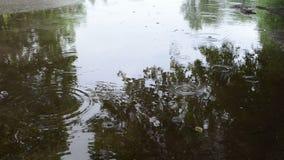 Woman cross soak water stock video footage