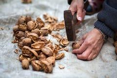 Woman crushing walnuts outdoor Royalty Free Stock Photos
