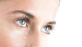Woman crying. Woman Blue Eyes Looking up with Tear on white Background Stock Photo